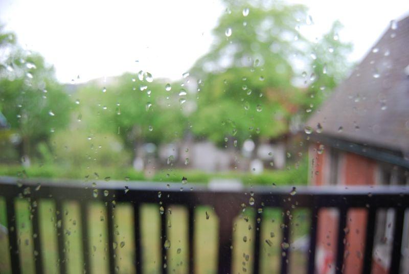 Rainiyday