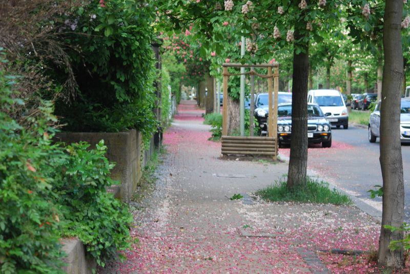 Pinksidewalk