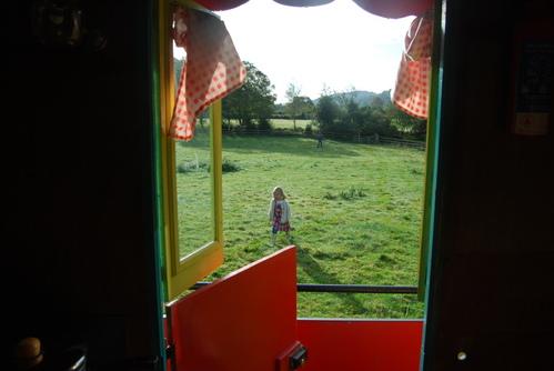 peeking through the window
